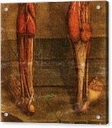 Anatomie Generale Des Visceres Acrylic Print