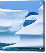 Icebergs, Canada Acrylic Print