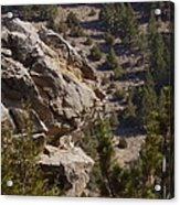 Montana Landscape Acrylic Print