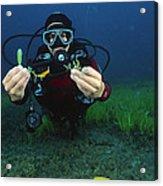 Invasive Seaweed Control Acrylic Print