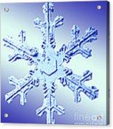 Snow Crystal Acrylic Print