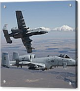Two A-10 Thunderbolts Fly Acrylic Print