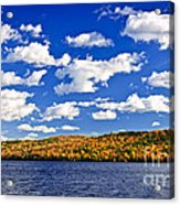 Fall Forest And Lake Acrylic Print by Elena Elisseeva