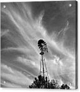 Texas Windmill Acrylic Print