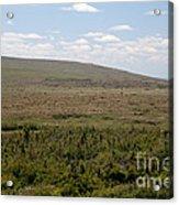 Alpine Tundra Acrylic Print