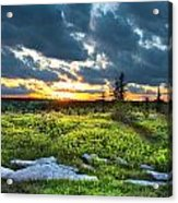 Dolly Sods Wilderness Acrylic Print