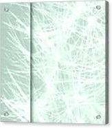 Piece Art Image Design Acrylic Print