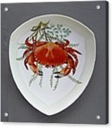 866 6 Part Of Crab Set  866  Acrylic Print by Wilma Manhardt