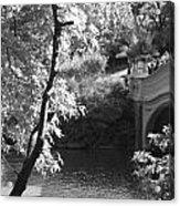 Bow Bridge In Black And White Acrylic Print
