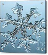 Snowflake Acrylic Print