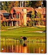 9th Hole's Occasional Water Hazard Acrylic Print