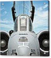 A-10 Thunderbolt II - Eye To Eye Acrylic Print