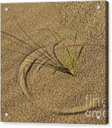 A Compass In The Sand Acrylic Print