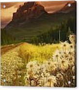 A Country Road With A Mountain In The Acrylic Print