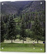 A Day At The Park In Vail Acrylic Print