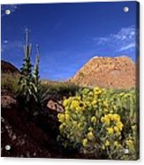 A Desert Landscape With Rock Formations Acrylic Print