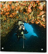 A Diver Explores A Cavern With Orange Acrylic Print