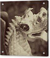 A Dragon's Tale - Series 2 Acrylic Print