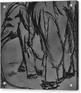 A Draw With An Elephant Acrylic Print