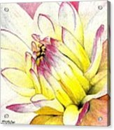 A Drop Of Yellow Acrylic Print