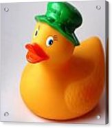 A Duck With Green Hat Acrylic Print