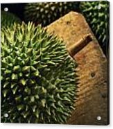 A Durian Fruit - Popular In South East Acrylic Print by Justin Guariglia