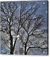 A Fall Sky Acrylic Print