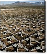 A Field Of Military Planes Acrylic Print