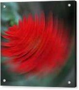 A Flower Spinning In A Tornado Like Effect Acrylic Print