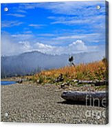 A Foggy Morning At Whiffin Spit Acrylic Print