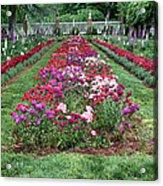 A Formal Garden Acrylic Print