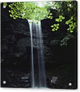 A Gentle Woodland Waterfall With Maple Acrylic Print