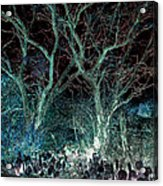 A Ghost Story Told On March Road Acrylic Print
