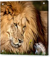 A Gift For Cameron Acrylic Print by Big Cat Rescue