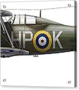 A Gloster Gladiator Mk II Acrylic Print by Chris Sandham-Bailey