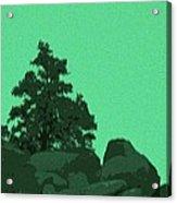 A Green Day For A Pinon Acrylic Print