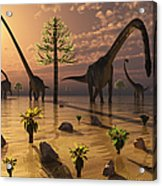 A Herd Of Omeisaurus Dinosaurs Grazing Acrylic Print