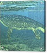 A Late Devonian Period Ichthyostega Acrylic Print