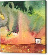 A Little House On Planet Goodaboom Acrylic Print