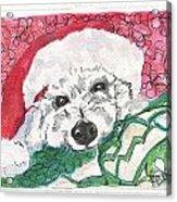 A Long Christmas Night Acrylic Print