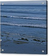A Longboard Surfer Watches The Surf Acrylic Print by Rich Reid