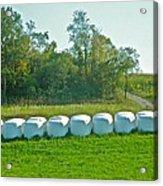 A Marshmallow World In Wisconsin Acrylic Print