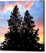 A Matchless Moment Acrylic Print