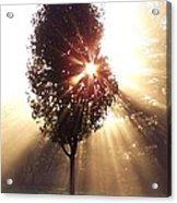 A New Day Fog Sunrise Acrylic Print