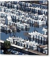 A New Orleans Cemetery Is Swamped Acrylic Print