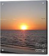 A Perfect Time To Fly Acrylic Print