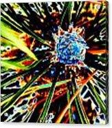 A Piney Abstract Acrylic Print