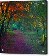 A Place Of Mystery Acrylic Print