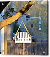 A Place To Perch Acrylic Print