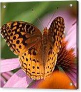 A Pretty Flying Flower Acrylic Print